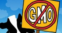 "Health Focus International: ""GMOs rank within the top five food concerns globally."