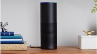 L2: 'Amazon Choice is becoming increasingly important as we transition to this world of voice'