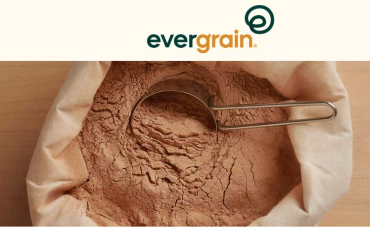 Barley protein emerging as attractive new option in plant protein toolbox, says AB InBev-backed upcycling startup EverGrain