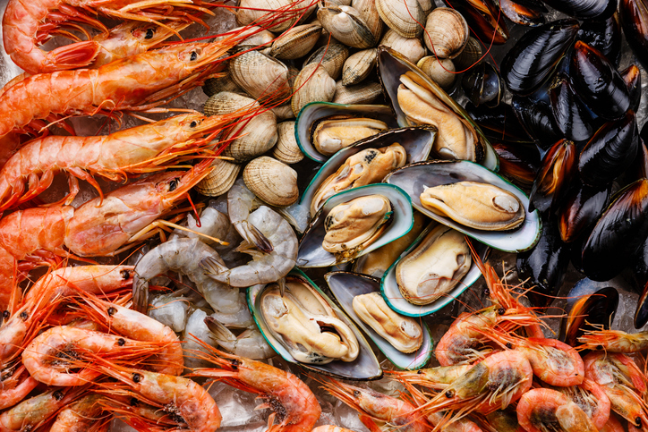 Call to rewild a third of UK waters presents opportunities for shellfish sector thumbnail