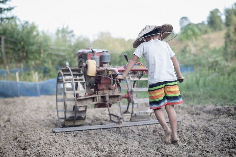 Germany outlaws human rights offenses in global supply chains, but is it enough? thumbnail